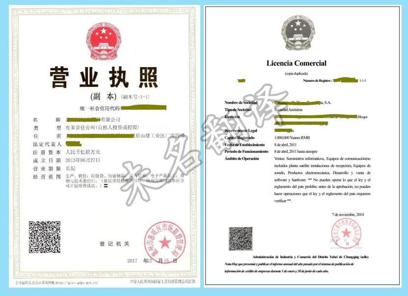外资注册证明翻译模板